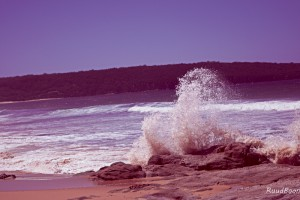 Beach Eden NSW Australia